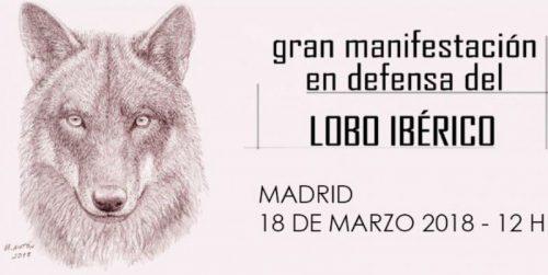 Gran manifestación en defensa del lobo, Madrid 2018