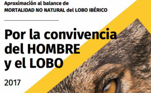 Aproximación del balance de mortalidad no natural del lobo ibérico.