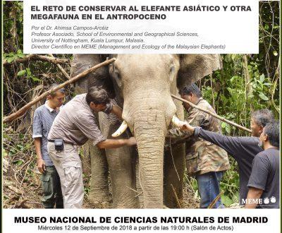Conferencia: El reto de conservar al elefante asiático y otra megafauna en el antropoceno