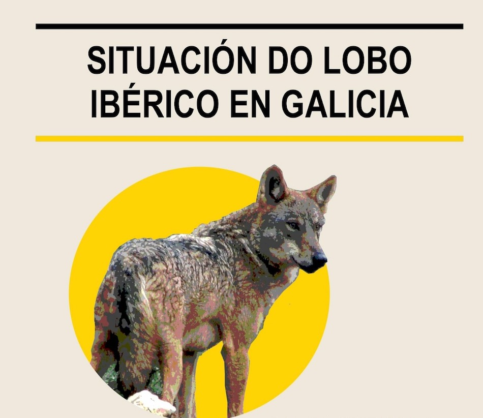 Situación del lobo ibérico en Galicia